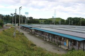 第一スポーツ広場仮設