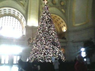 X'MAS TREE.JPG